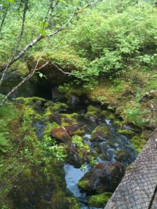 One of several creeks on Crater Lake Trail, hiking in Cordova AK